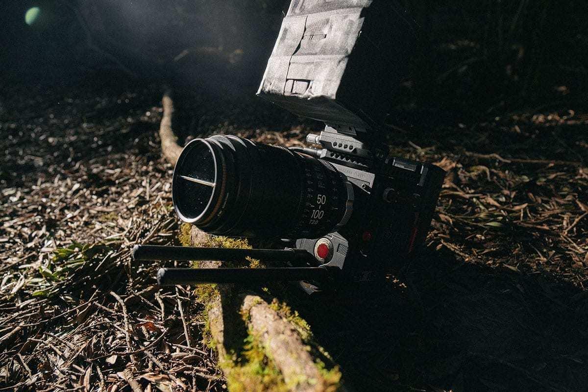 black trail camera near tree